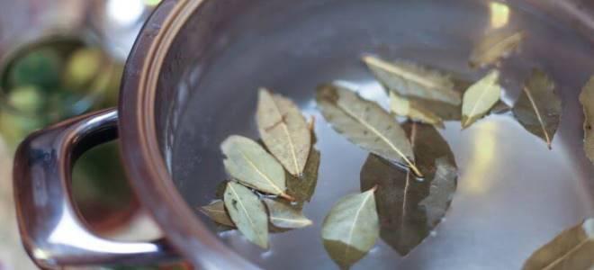 Лечение аллергии у детей лавровым листом