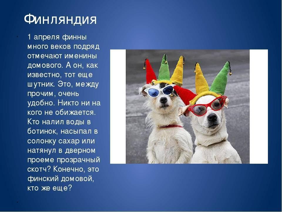 История праздника День Смеха 1 Апреля