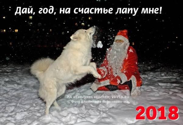 """Сценарий проводов уходящего года Собаки """"Дай, Джим, на счастье лапу мне…"""""""