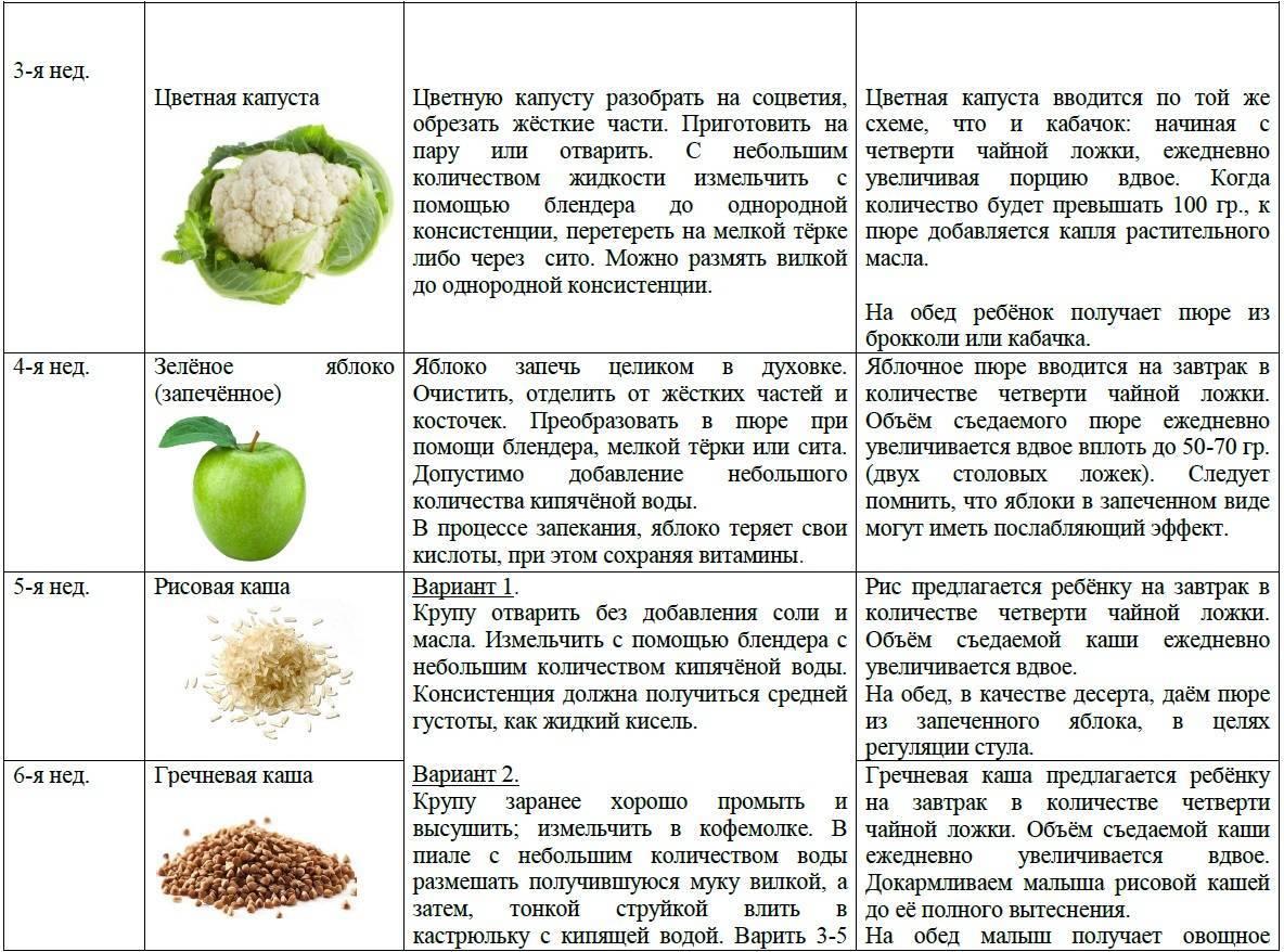 Правила введения шоколада в детское питание