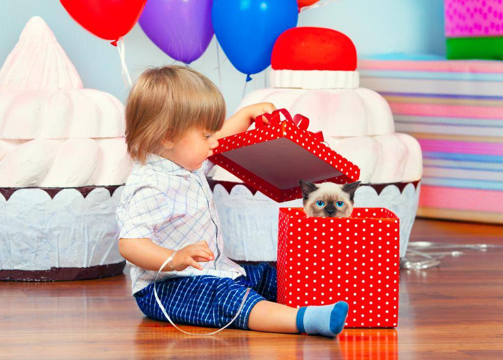 Что подарить на 4 года ребенку: советы родителям мальчиков и девочек