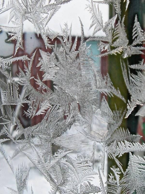 Сказочное настроение зимних праздников: нестандартно и креативно украшаем окна к Новому году