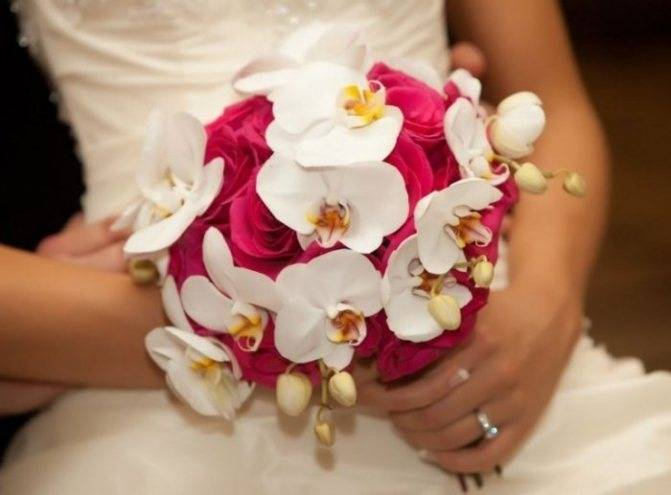 Букет из орхидей — нежно и стильно