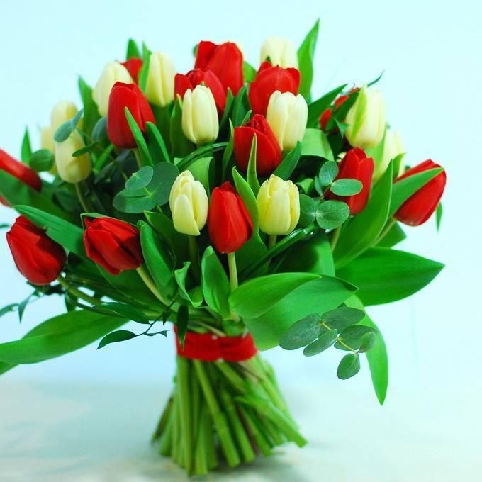 Дыхание весны в букете из тюльпанов