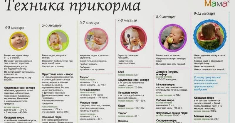 Абрикос для ребенка — с какого возраста начинать вводить в рацион?