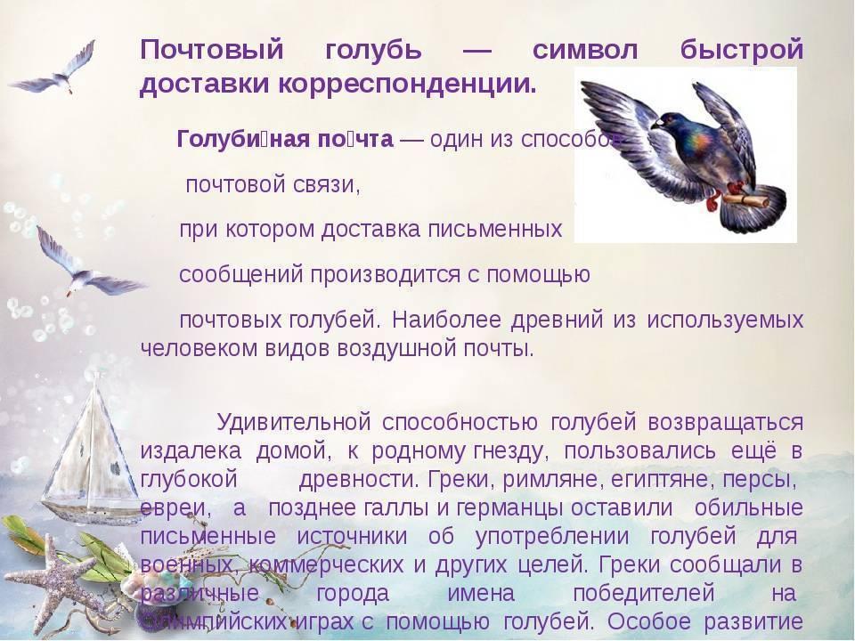Мобильные поздравления – это почтовые птицы наших дней