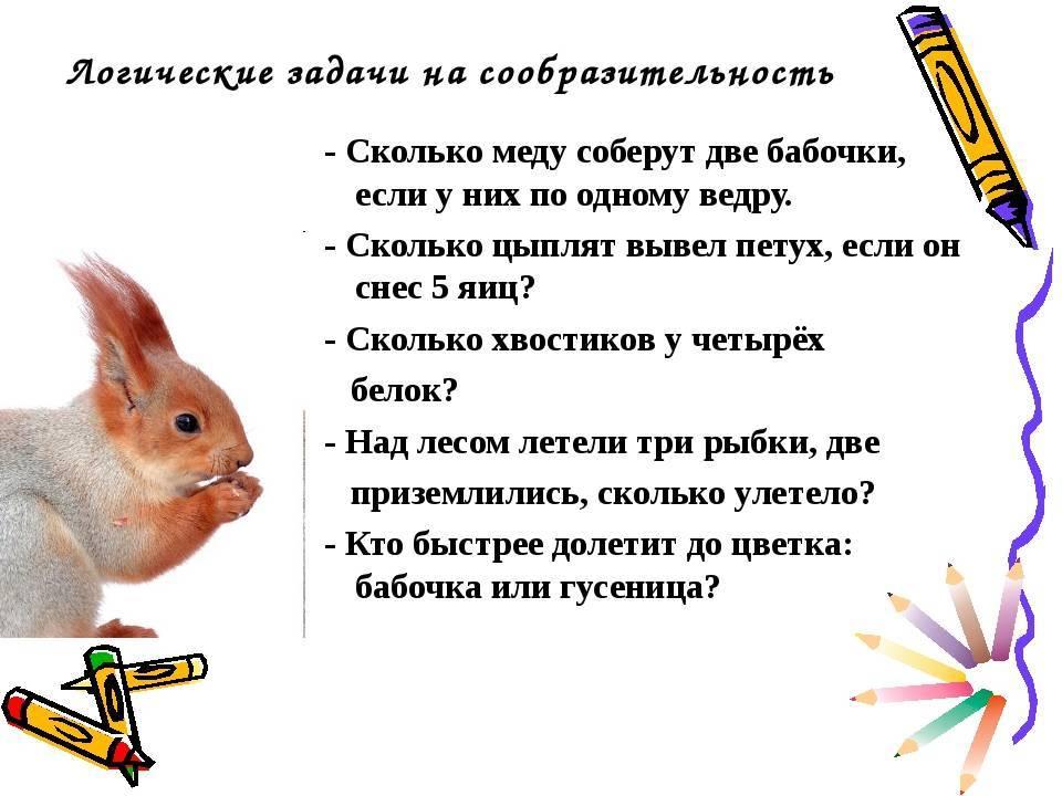 Логические загадки для детей
