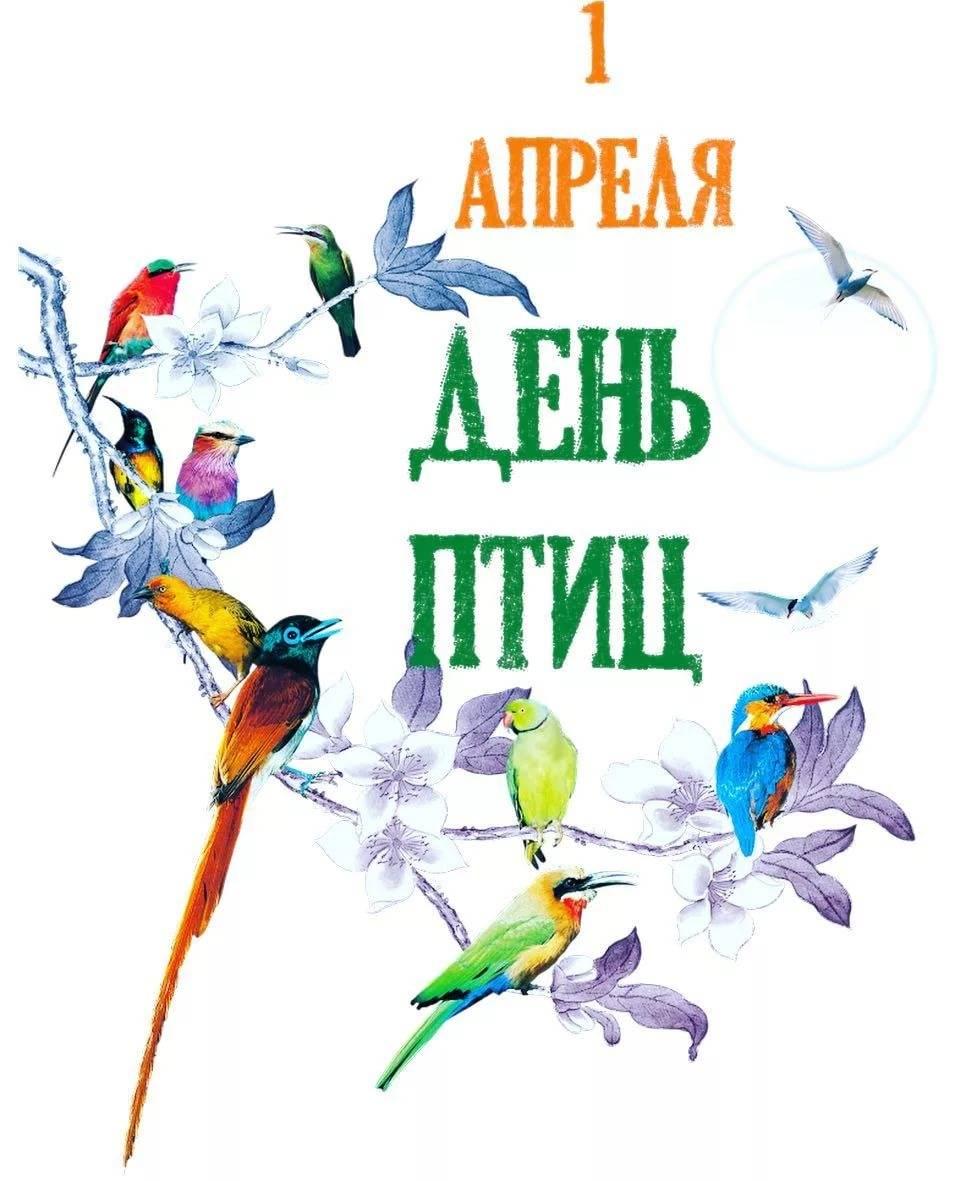 1 апреля – это еще и День птиц История праздника